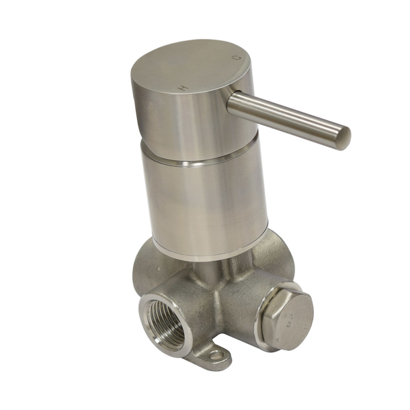 Stainless steel bathroom wall faucet